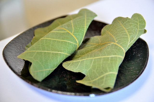 Kashiwa mochi—mochi wrapped in oak leaves.