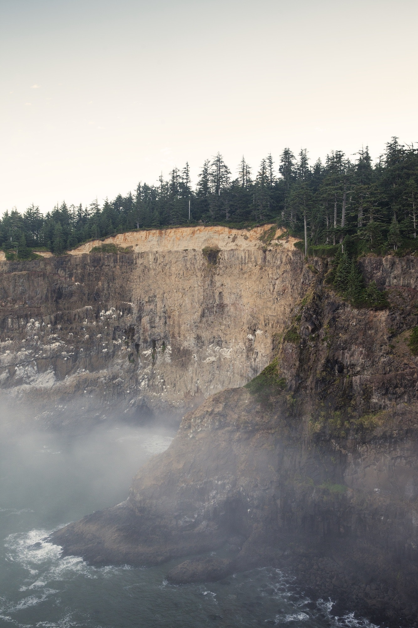 The Oregon coast looks daunting from the Cape Meares Lighthouse bluffs, but the waters hold vast promise for adventurous foragers.