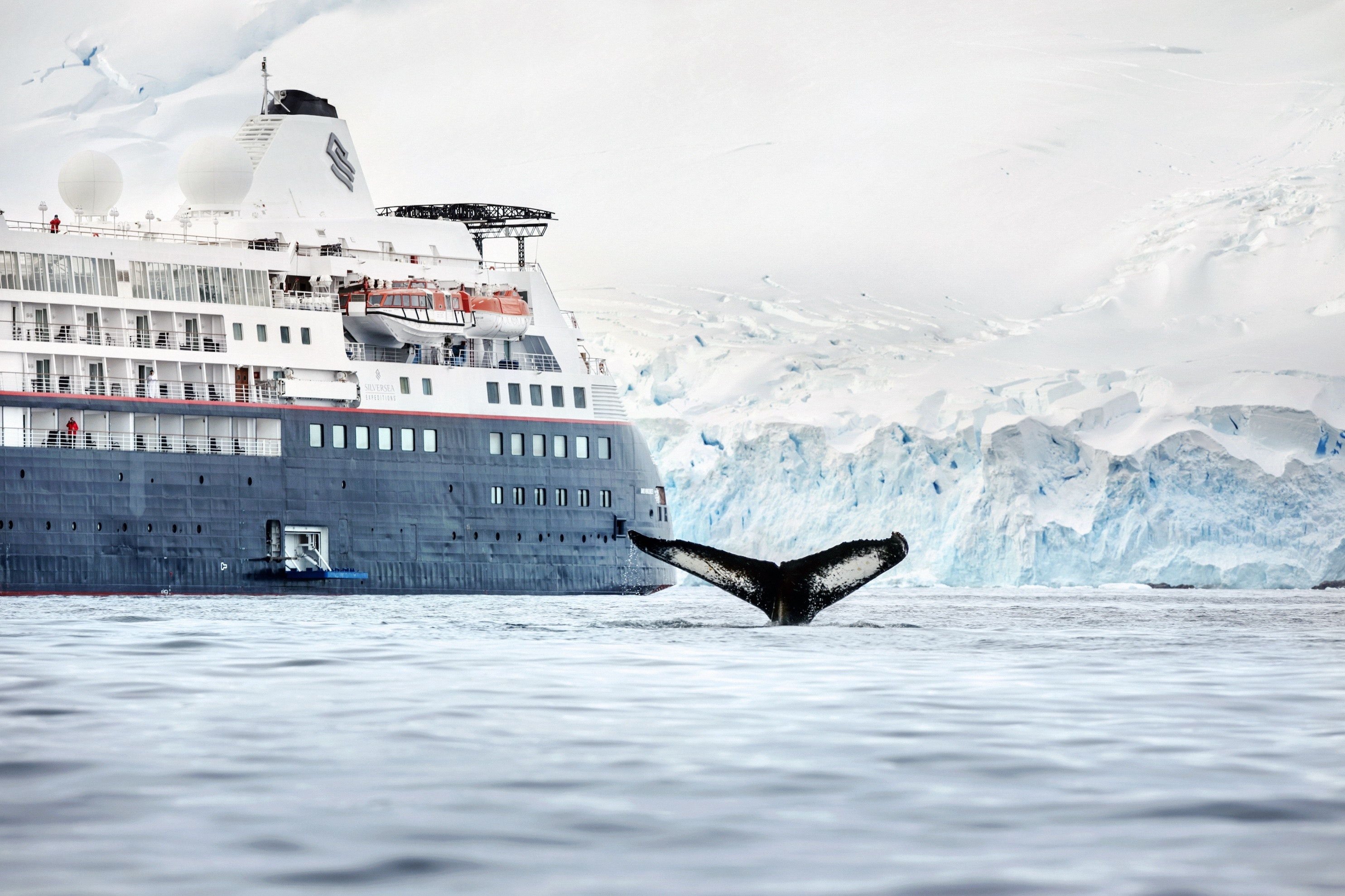 The Silver Cloud takes passengers to Antarctica in ultimate comfort.