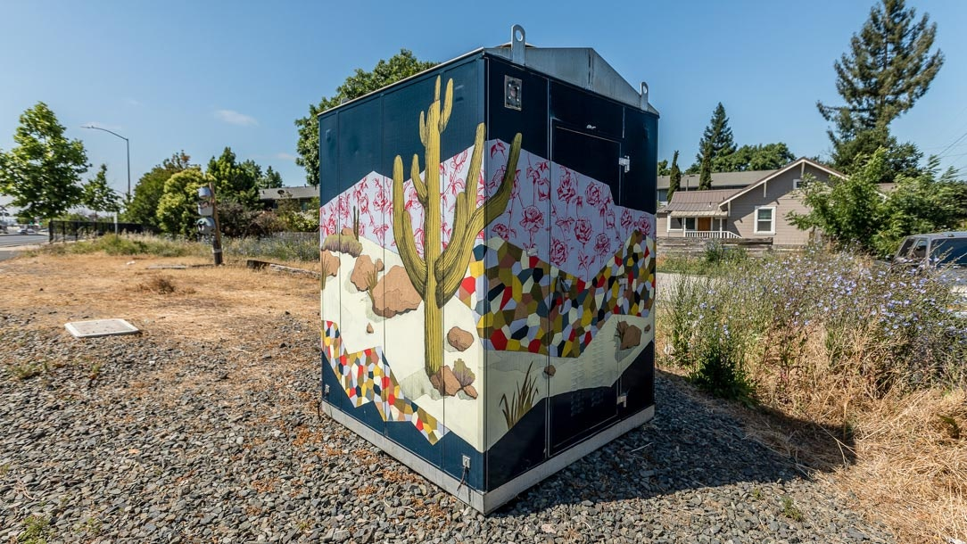 Melissa Arendt's colorful cactus mural is on a signal box off Napa Street.