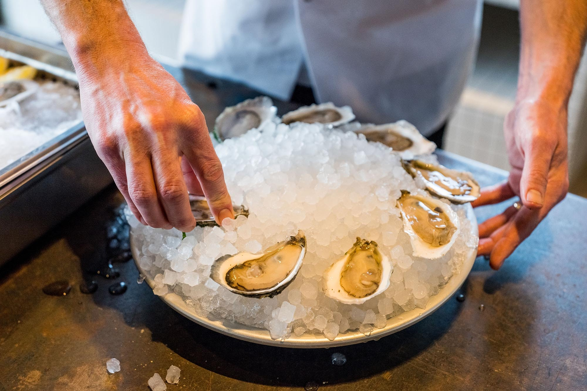 Many people wouldn't dream of eating an oyster—like these beauties from Automatic Seafood—out of season, but don't realize that fish have seasons too.