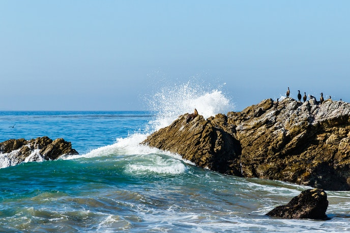 Fall asleep to the sound of crashing waves at Leo Carillo State Park in Los Angeles.