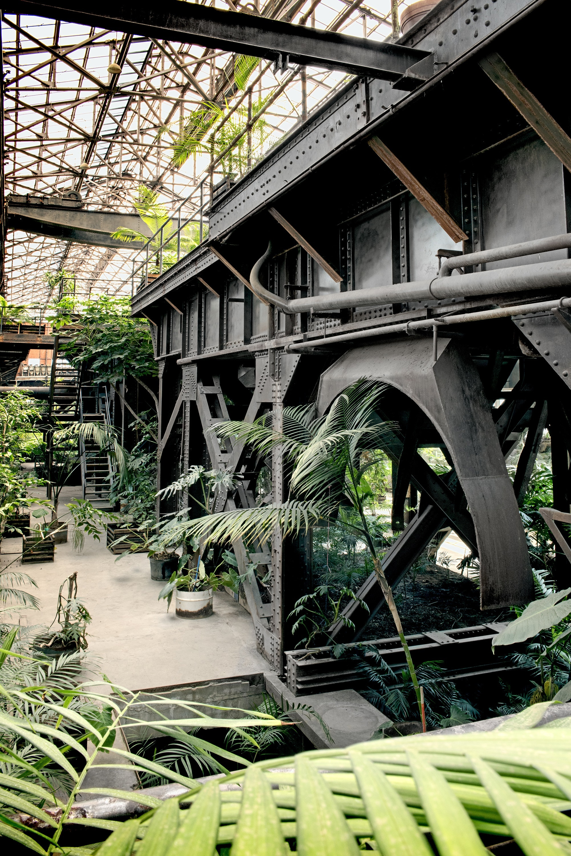 Read a book in Mexico's Biblioteca Vasconcelos Greenhouse, next to the library.