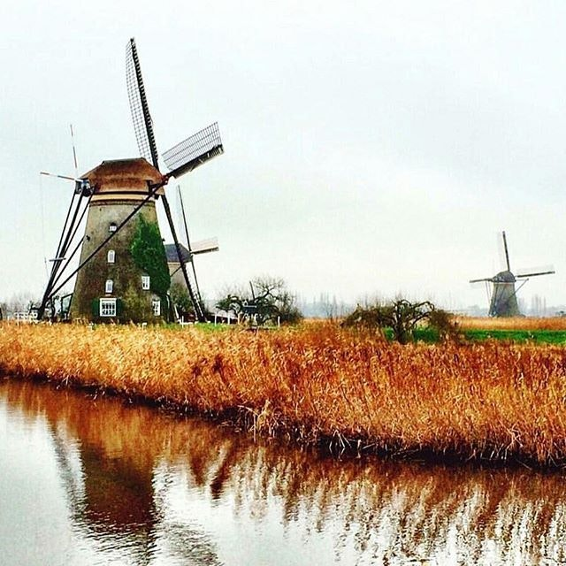 The 19 iconic windmills of Kinderdijk are the largest concentration of old windmills (circa 1740) in the Netherlands. Now, where are the tulips?