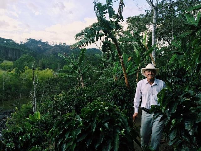 A coffee farmer in Salento, Colombia.