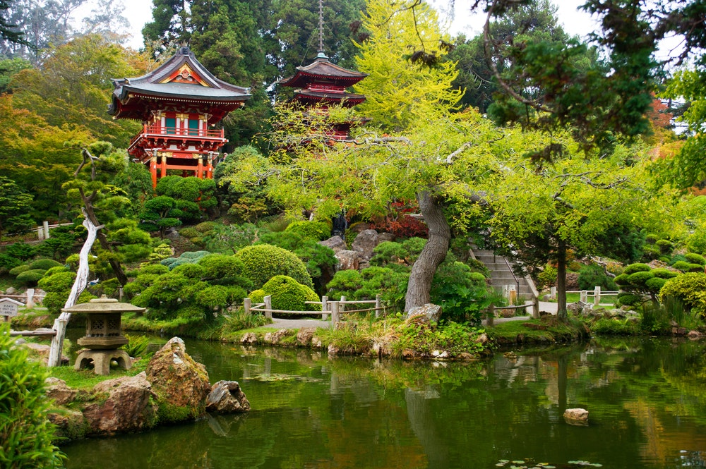 San Francisco's Golden Gate Park is home to the peaceful Japanese Tea Garden.