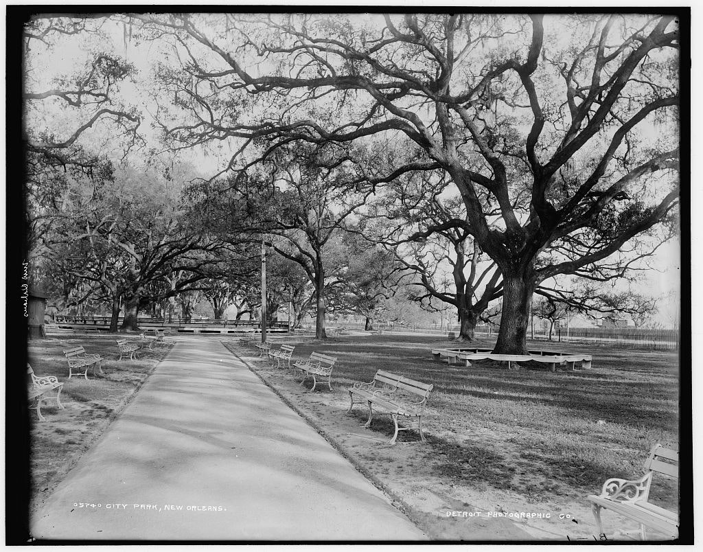 New Orleans City Park in 1890