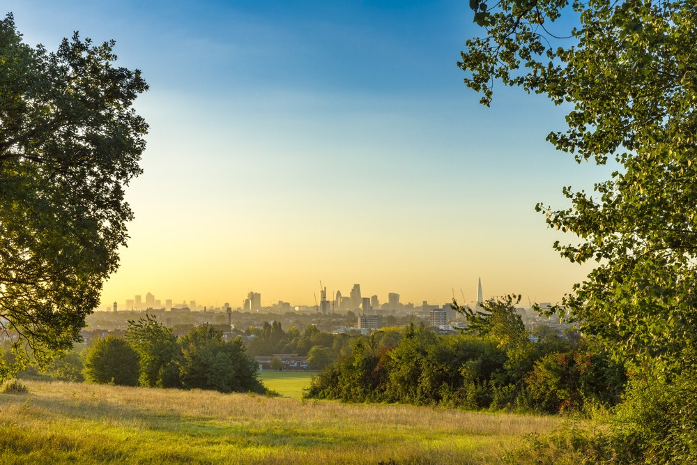 A morning view of London from Hampstead Heath