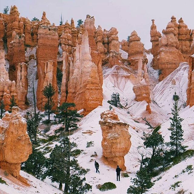We'd brave the cold to hike with @sam.strickler in Bryce Canyon any day.