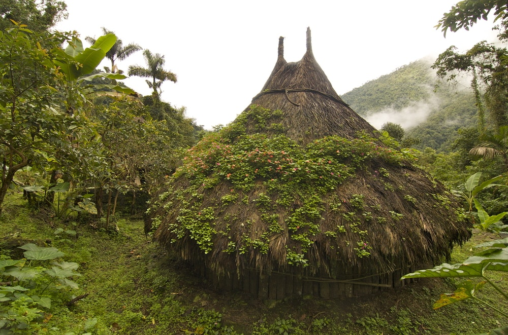 You might spot structures like these on your trek to Ciudad Perdida.