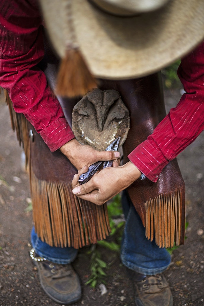 Guide Melissa Pangraze pulls nails from Blacktail's hoof after the horse lost a shoe.