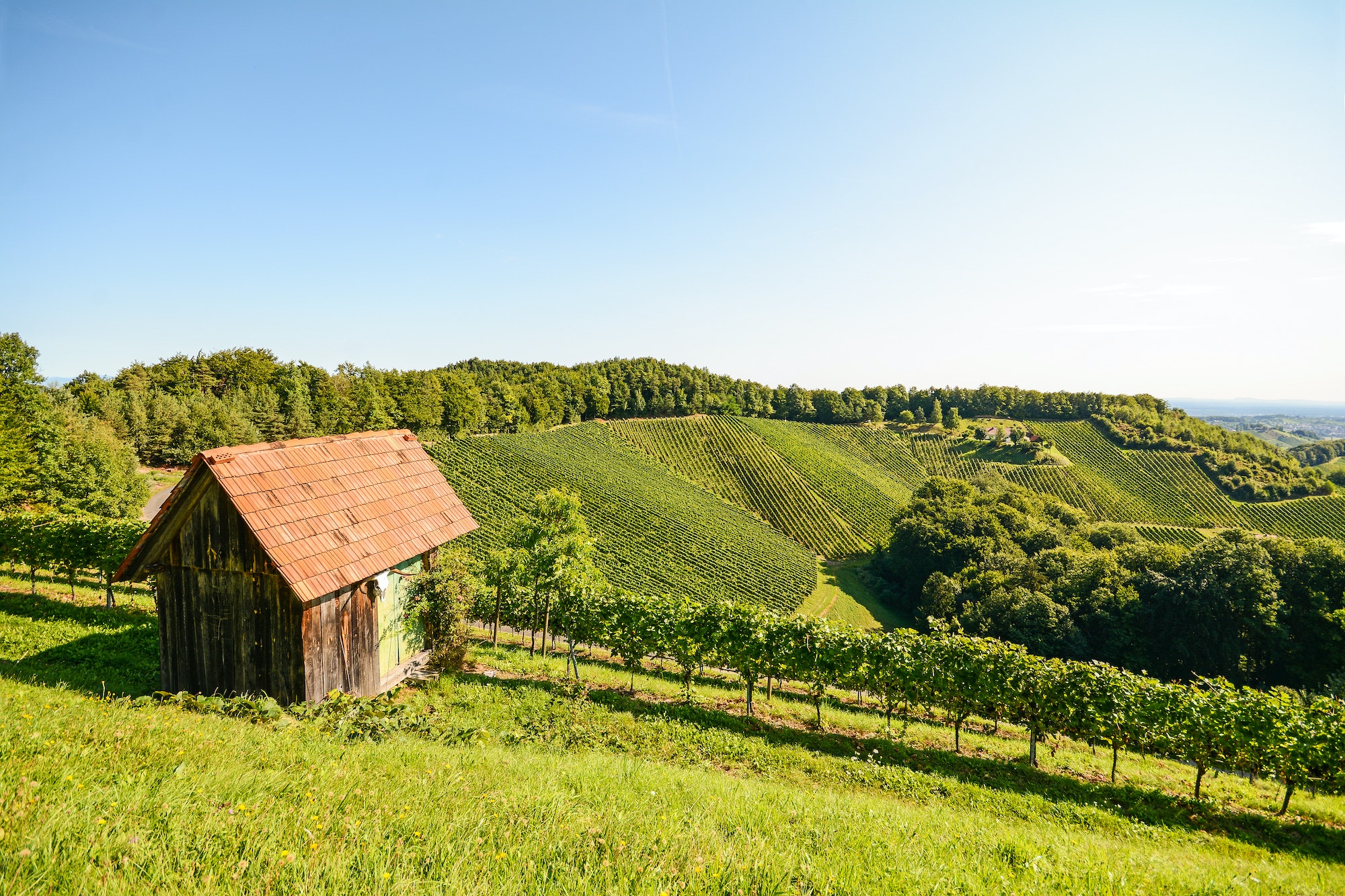 Burgenland is Austria's easternmost state, bordering Hungary and Slovakia.