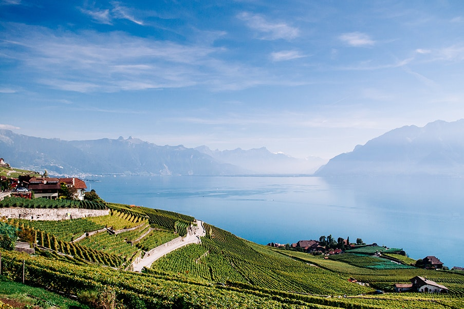 The Fête des Vignerons, a Swiss winegrowers' festival, takes place this year from July 18 to August 11.