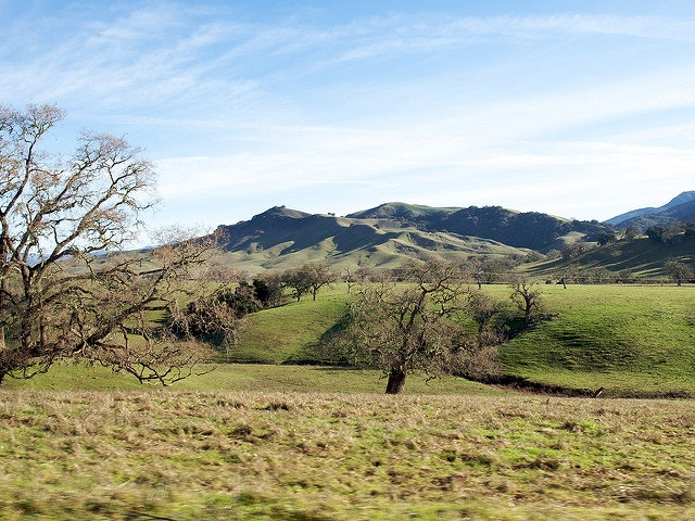 Ditch the city for a weekend at Alisal Guest Ranch.