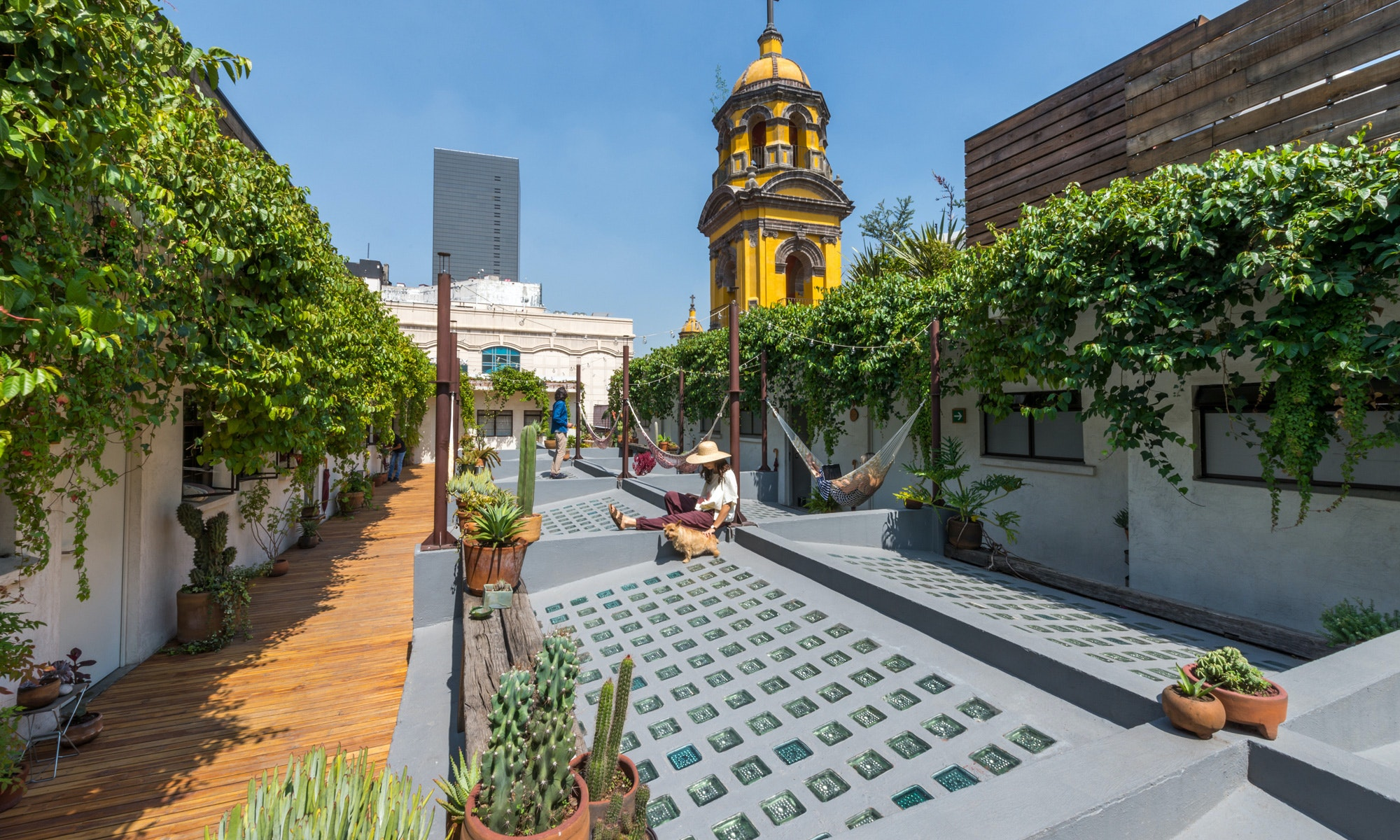 With a rooftop common area, the 11-room Chaya B&B sits atop the eclectic Barrio Almeda shopping center.