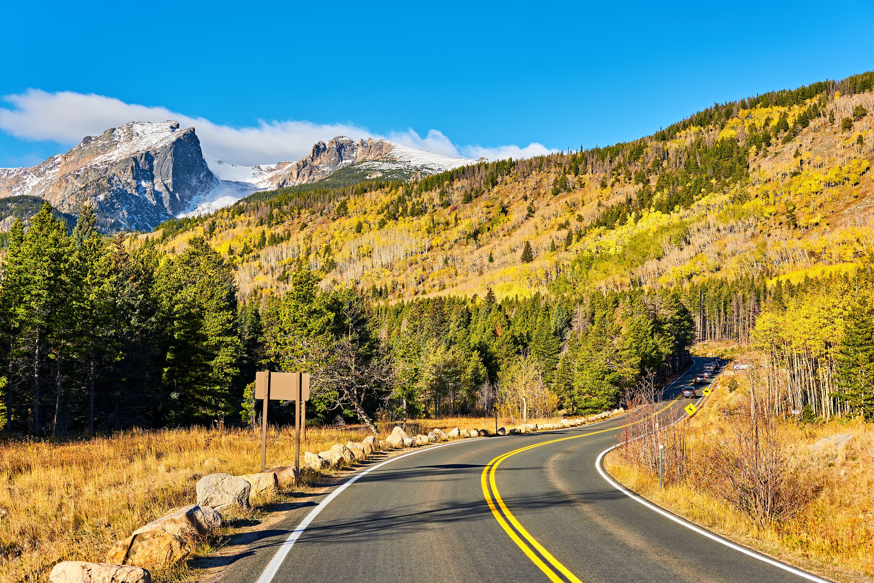 Groves of aspen in Rocky Mountain National Park glow yellow and orange in the fall.