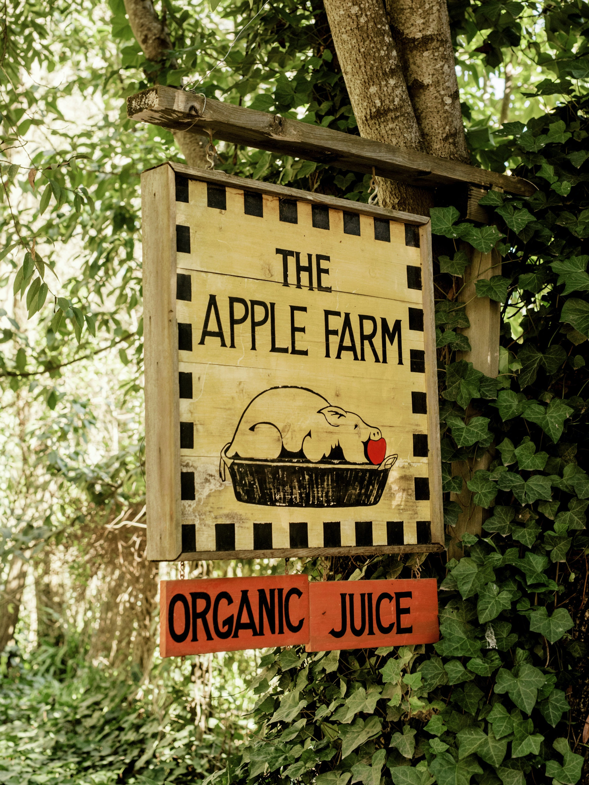The Apple Farm, located in Philo, is a working farm and offers guest quarters and guided cooking lessons.