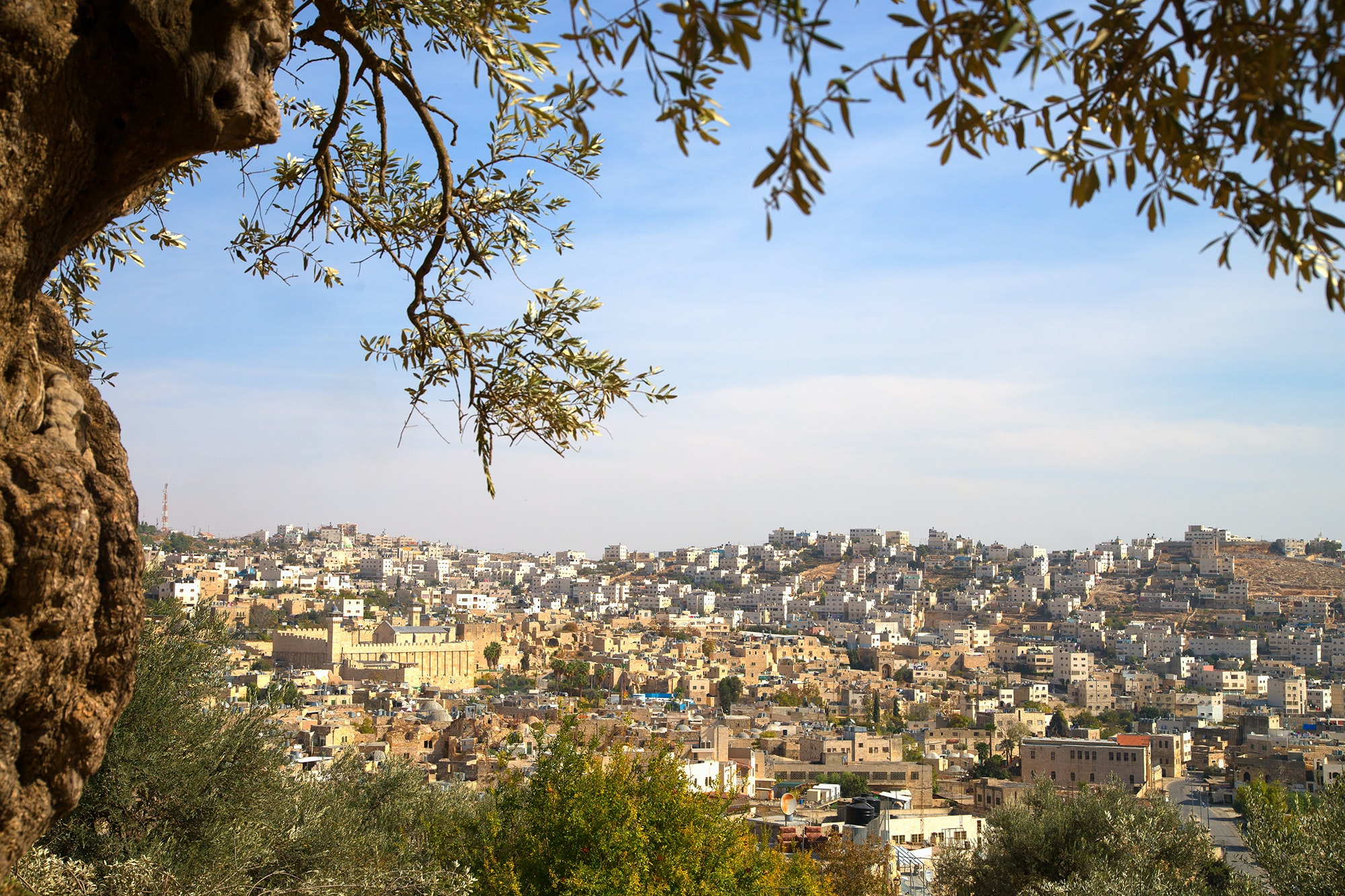 View of Hebron from the West Bank of Palestine