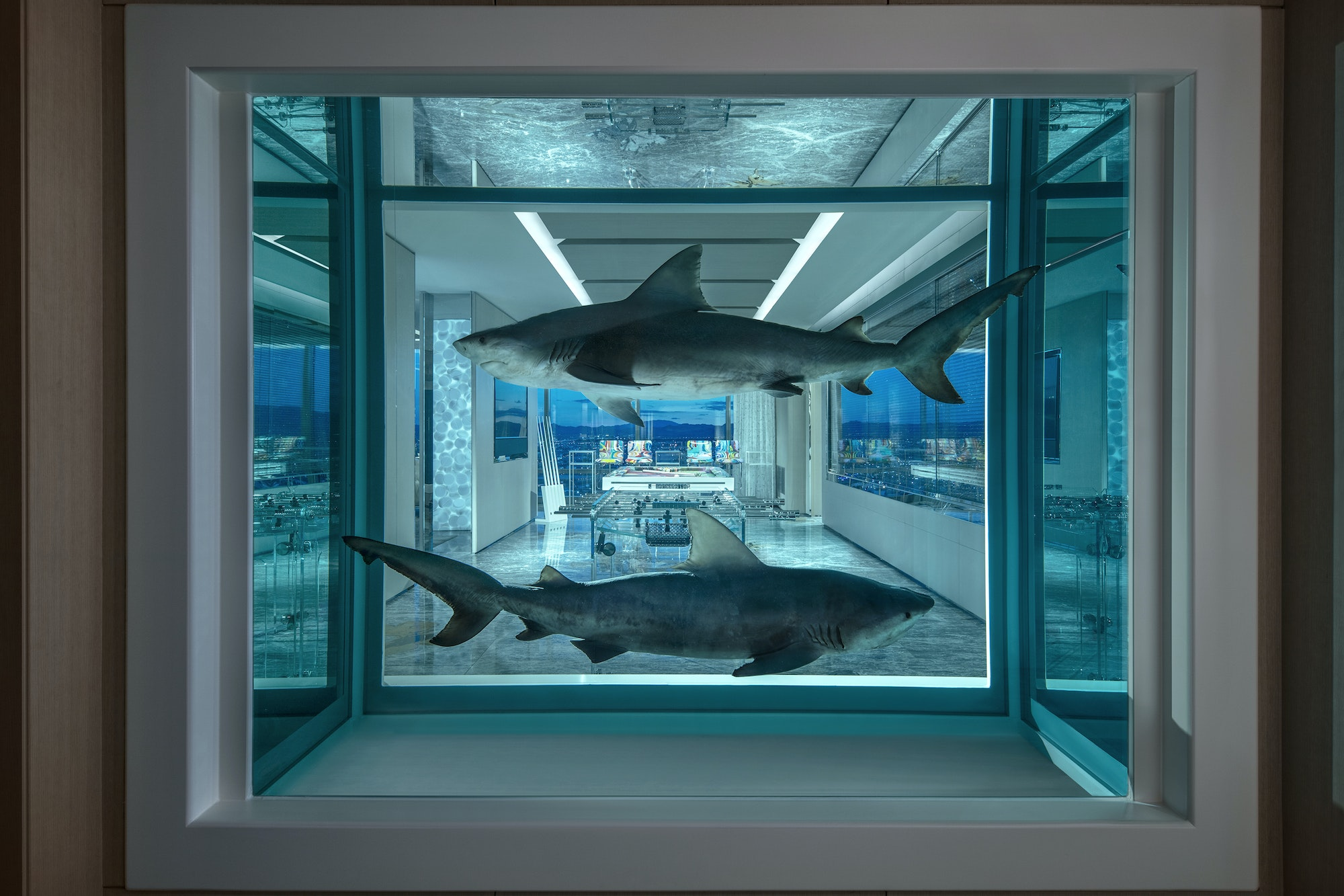 A very different kind of Vegas shark welcomes visitors into the suite.