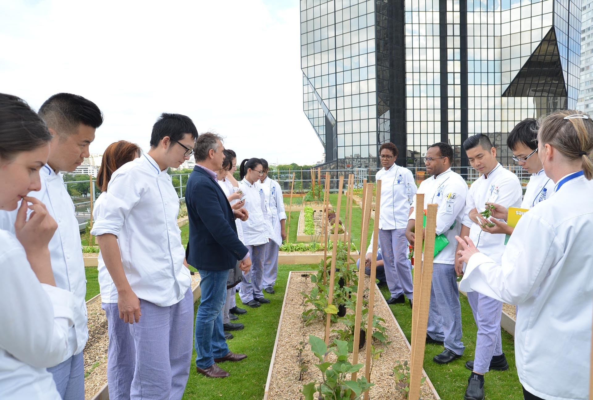 Culinary Arts students learning about vegetable gardening from EXOVEGETAL professional