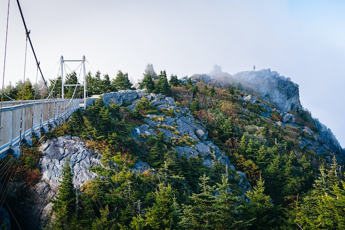 Satisfy your wild side by crossing the Mile High Swinging Bridge, which crosses an 80-foot chasm.