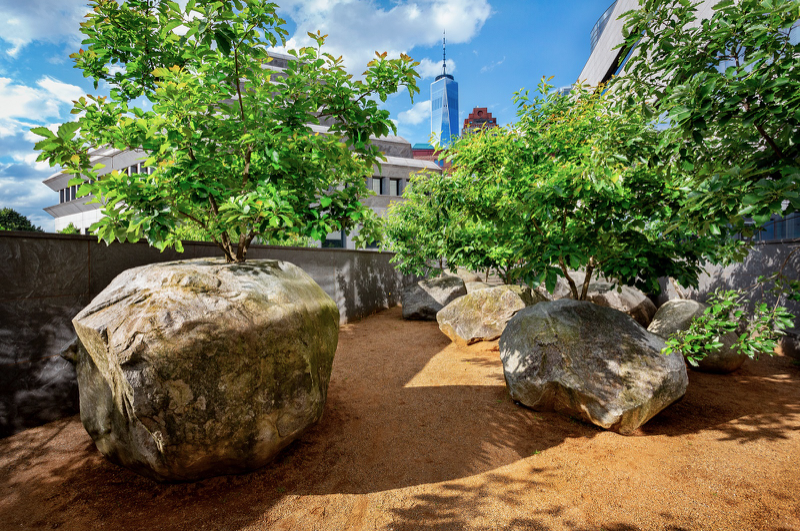 During summer months, the trees in the Garden of Stones sprout vibrant green leaves. In the winter, bare branches remain rooted in the boulders.