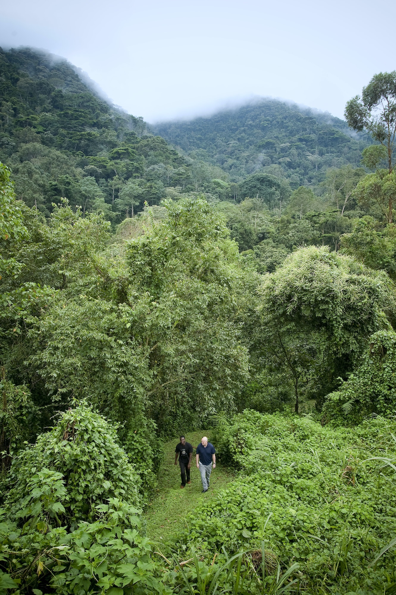 Patrick Otim and Patrick Symmes take a stroll in Bwindi Impenetrable National Park.