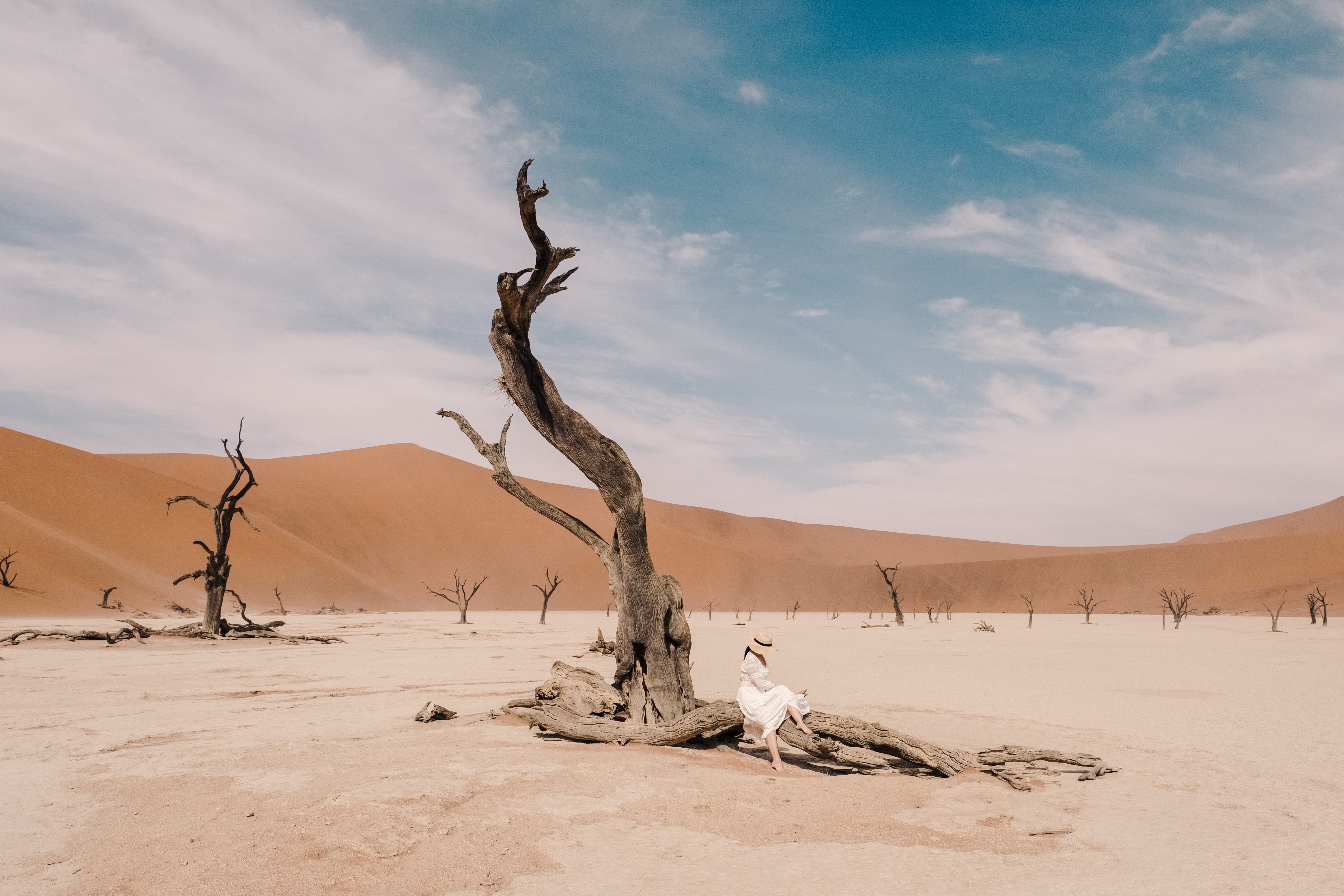 """""""These camel thorn trees were the catalyst for the trip, and they did not disappoint,"""" says Cui."""
