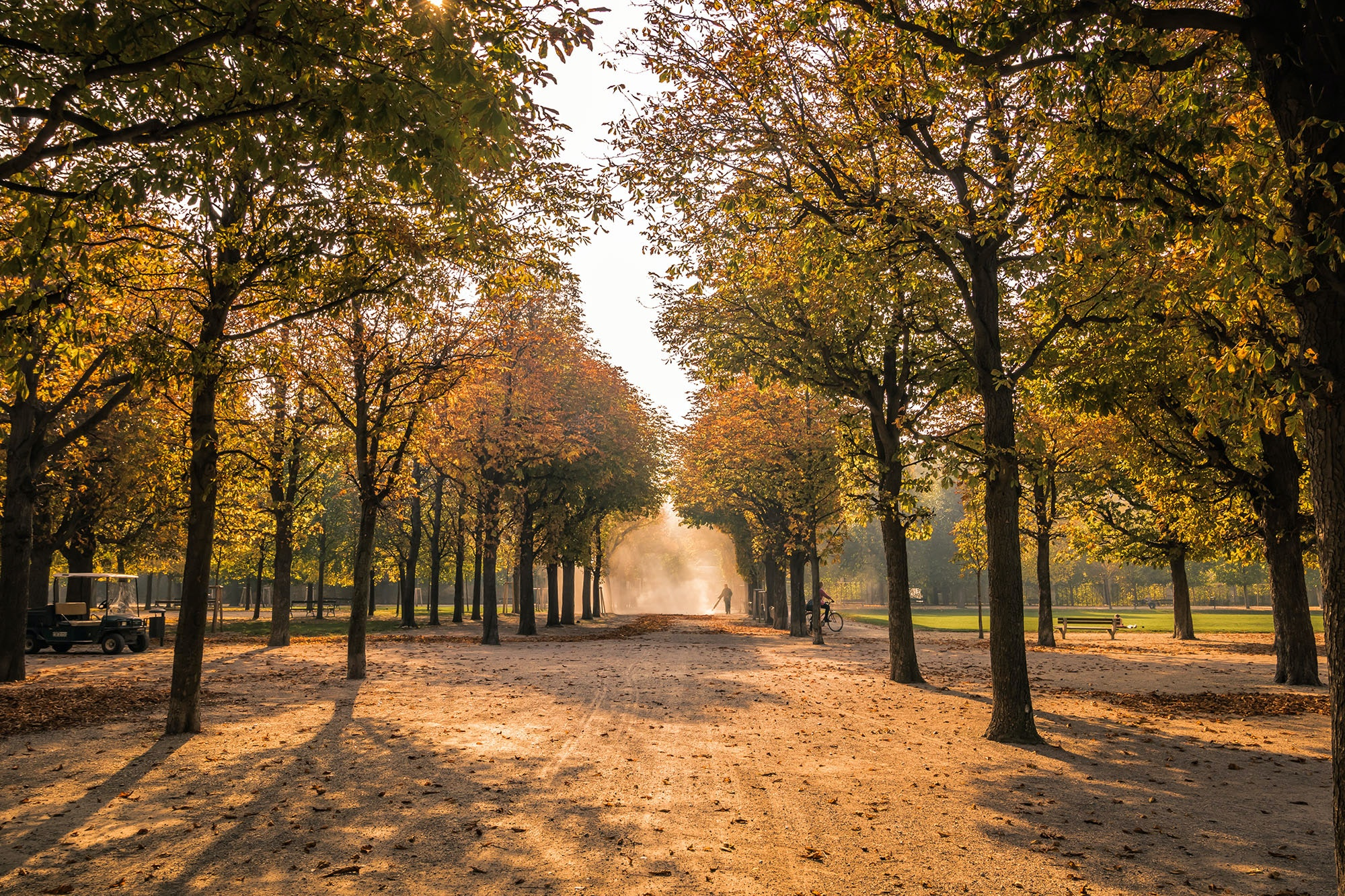 Vienna's Augarten is beautiful place to watch the leaves change in the fall.