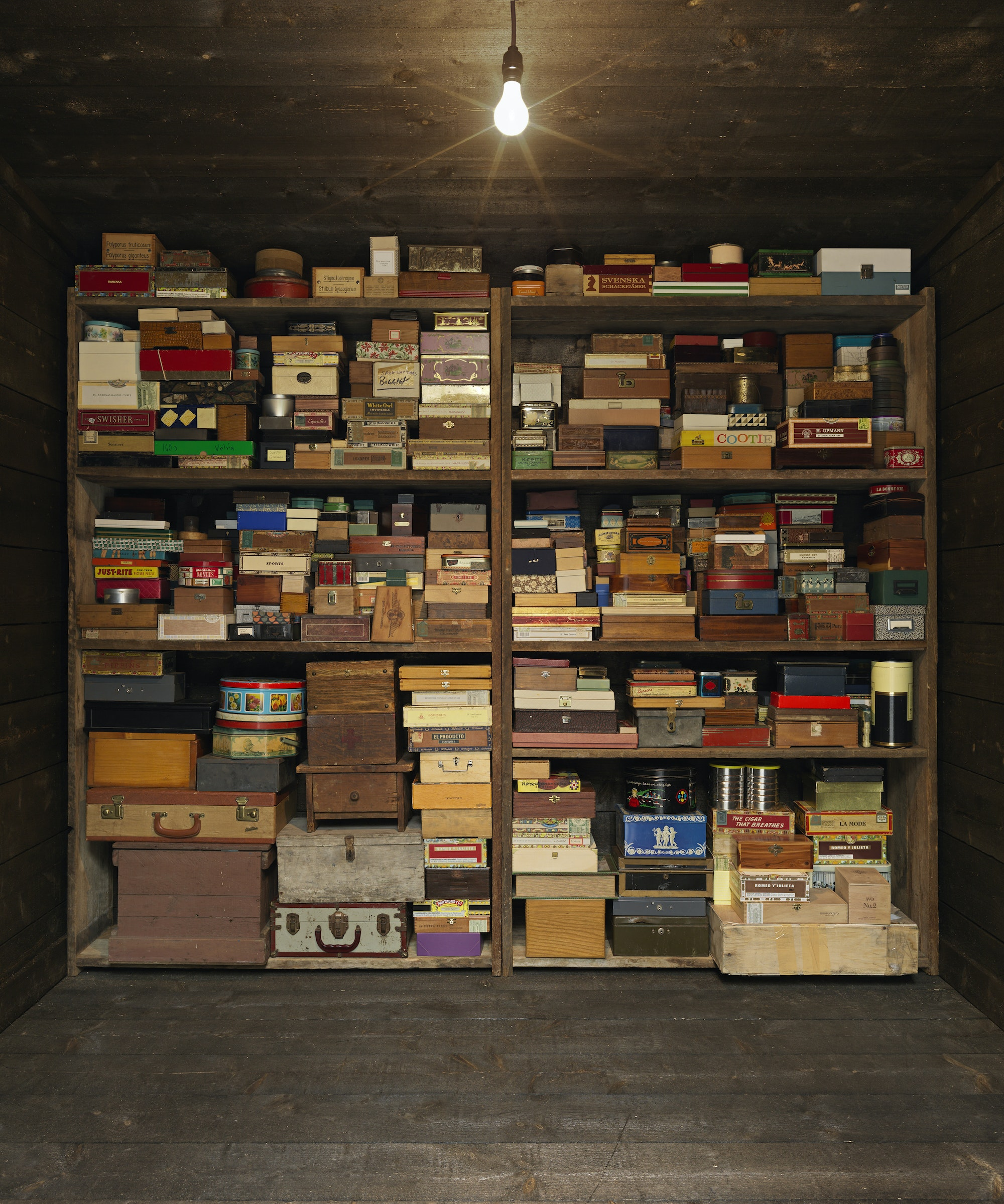 """Mark Dion's """"Memory Box"""" is one of the installations at Storm King."""