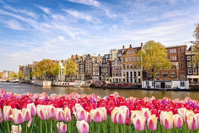 View the famous tulips and green spaces in one of Amsterdam's 85 areas open to the public in April.