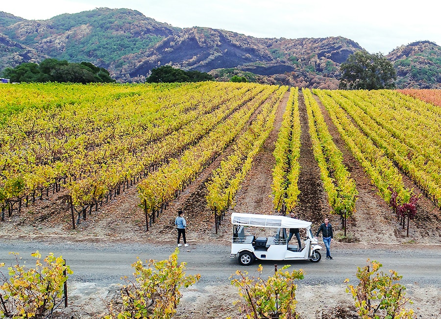 Make your way through the vineyards on an electric tuk-tuk.