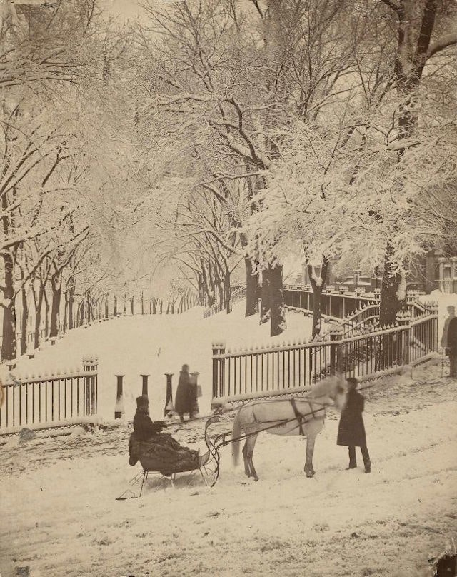 Lovely weather for a sleigh ride.