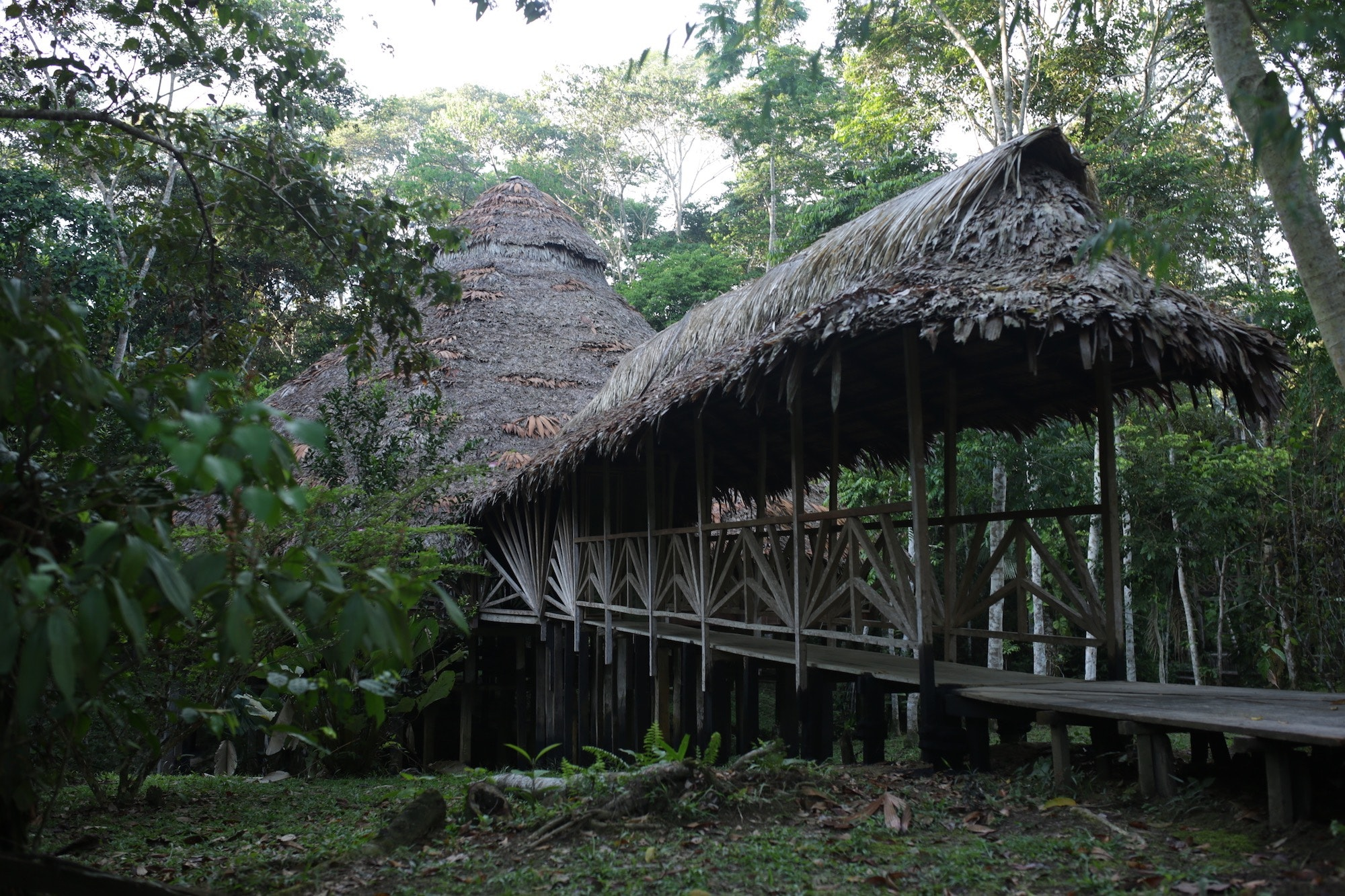 Shaman Percy's maloka outside Iquitos, Peru.