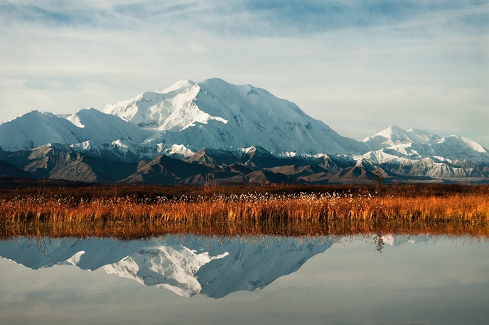 Denali National Park is home to its namesake mountain, the tallest peak in the U.S.