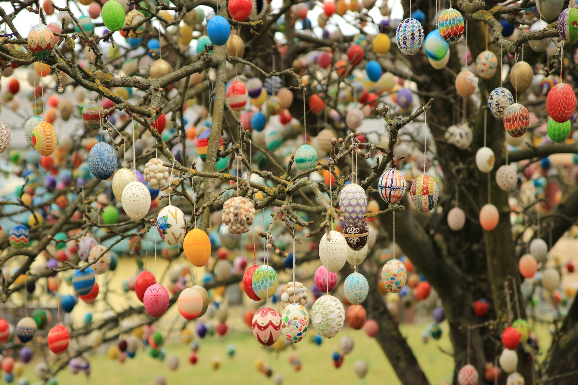 An Easter Egg Tree in Saalfeld, Germany