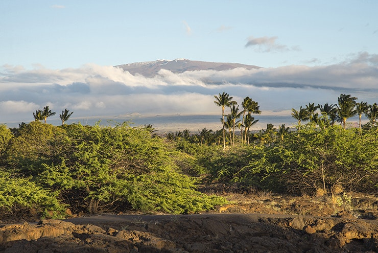 If you measure its height from the ocean floor, Mauna Kea is taller than Mount Everest.