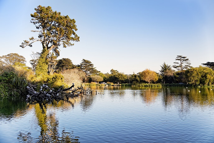 The Crosstown Trail runs through Golden Gate Park, where you'll catch views of Stow Lake and Strawberry Hill.