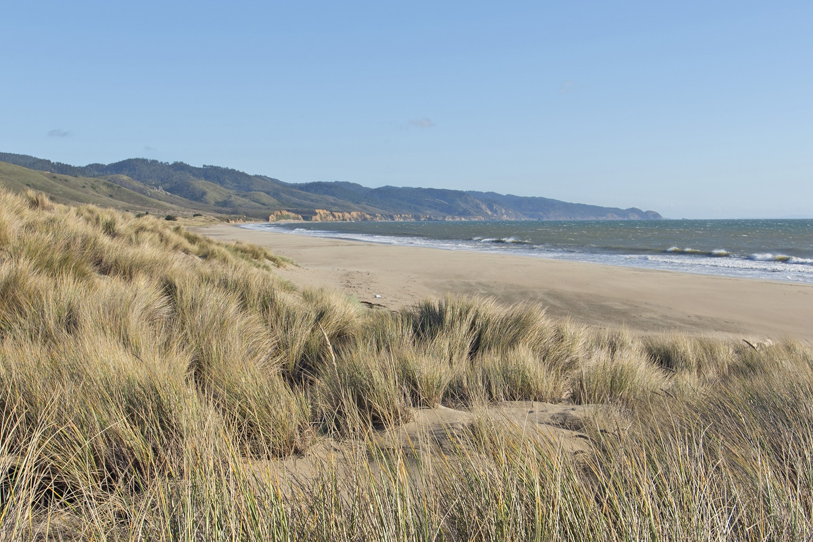 Stroll along the sands of Limantour Beach and collect driftwood for a bonfire at Coast Camp.