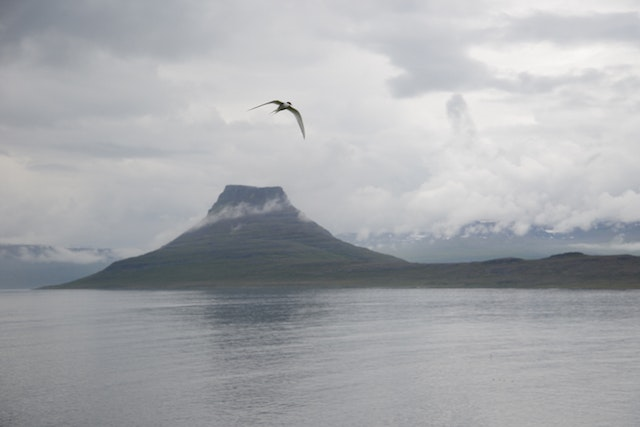 Wild, lonely beauty in far-flung Iceland
