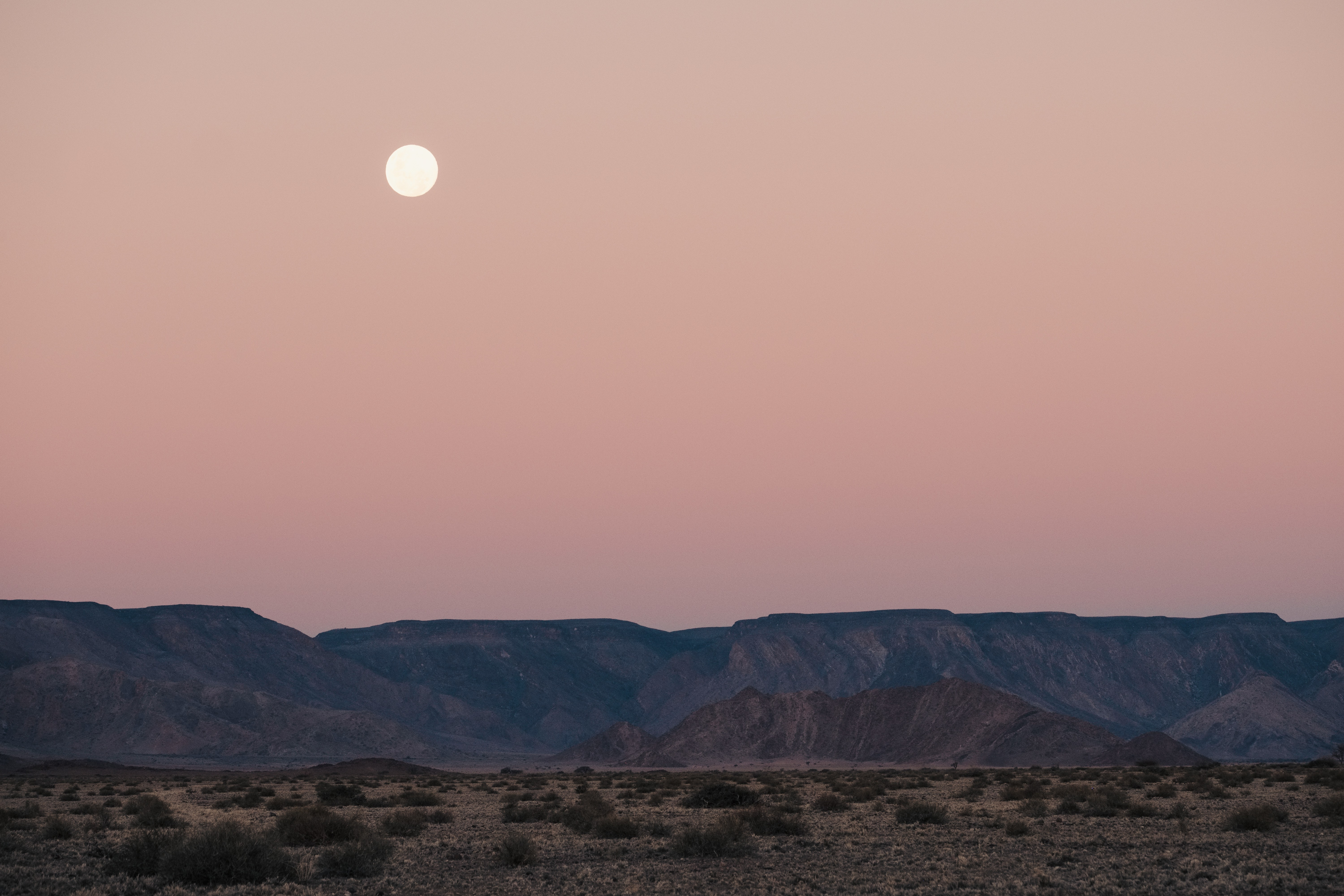 A full moon sighting on the Namib plains