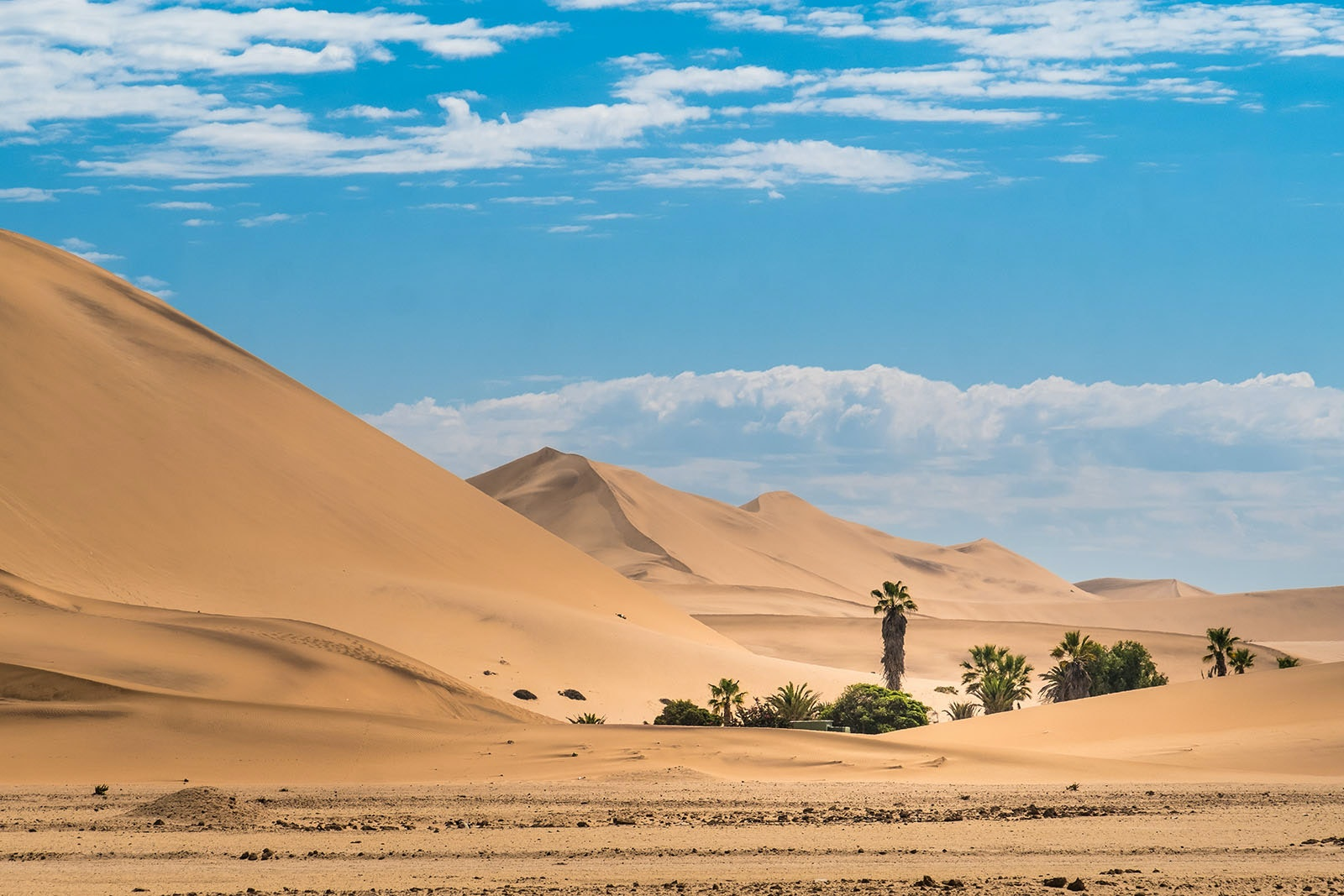 Walvis Bay, in Namibia, has a wealth of dunes to explore.