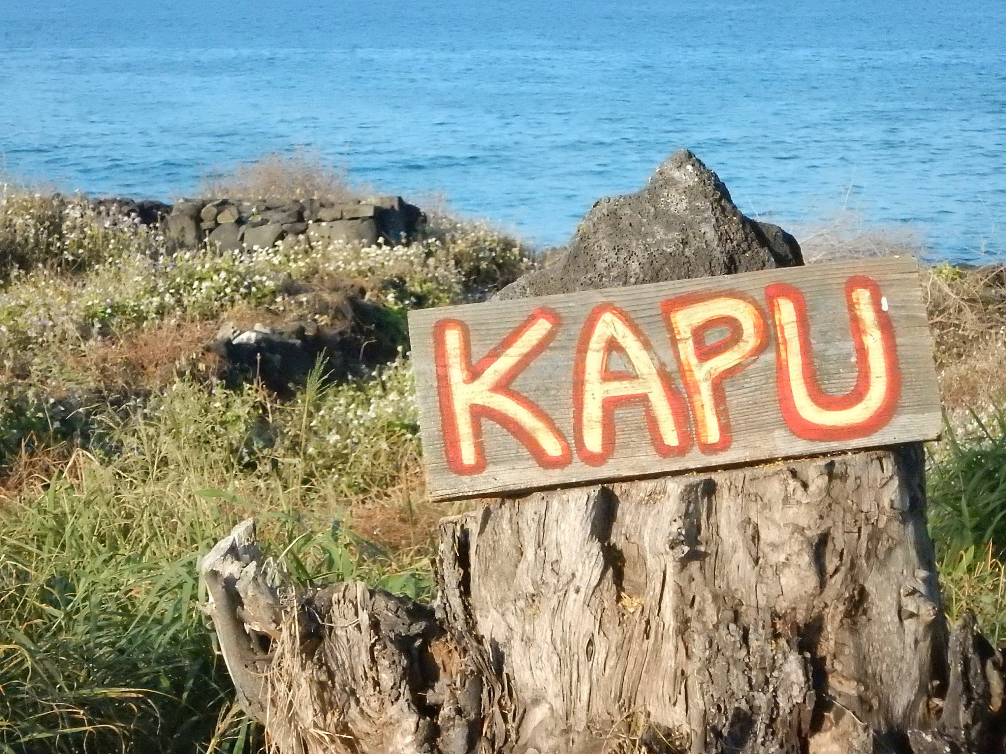 """A sign at part of the Kona beachfront; """"kapu"""" is the Hawaiian word meaning """"no trespassing"""""""
