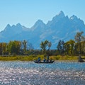 Snake River, Grand Teton National Park, WY Moose Wyoming United States