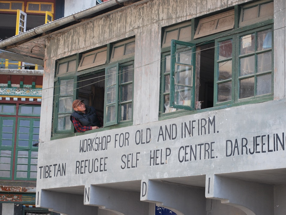 Darjeeling's Best Cultural Experience: Tibetan Refugee Self-Help Center Darjeeling  India
