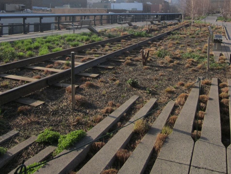 Walk the Highline for the best view of NYC!