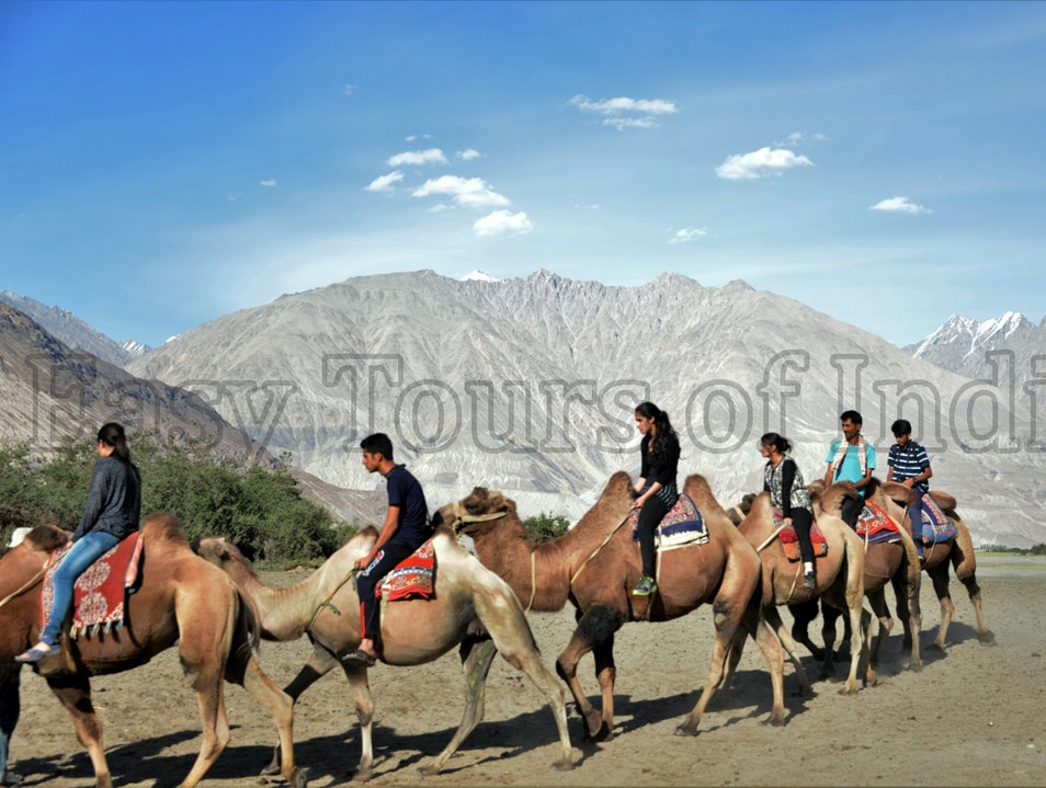 Leh & Ladakh Tours   Earth