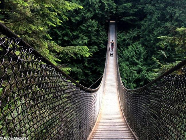 Walk Vancouver's Suspension Bridges