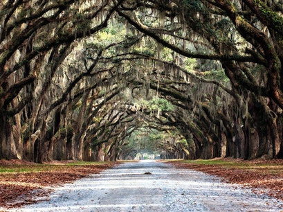 Wormsloe State Historic Sites Savannah Georgia United States