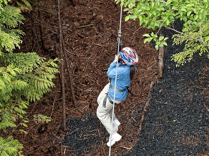 Zip Line near Denali Denali National Park and Preserve Alaska United States